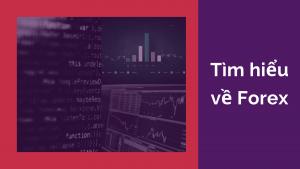 tim-hieu-ve-olymp-trade-forex
