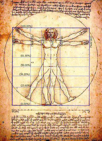 anh-minh-hoa-chi-bao-fibonacci